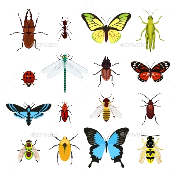GraphicRiver Insects Icons 9473382