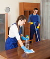 Professional cleaners working - PhotoDune Item for Sale