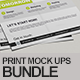 Flyer / Bi Fold / Magazine Cover Mock-Ups Bundle - GraphicRiver Item for Sale