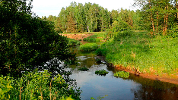 VideoHive The River in Summer 9477037