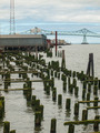 Abandoned Algae Covered Pier Logs with Astoria Bridge - PhotoDune Item for Sale