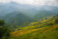 Beautiful View of mountains contain terraced fields - PhotoDune Item for Sale
