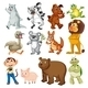 Land Animals - GraphicRiver Item for Sale