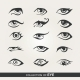Set of Eyes - GraphicRiver Item for Sale