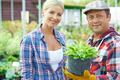 Gardeners - PhotoDune Item for Sale
