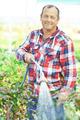 Irrigation - PhotoDune Item for Sale