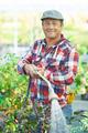 Watering garden - PhotoDune Item for Sale