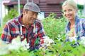 Happy gardeners - PhotoDune Item for Sale