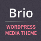 Brio - Media & E-Commerce WordPress Theme