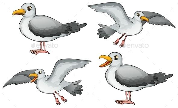 GraphicRiver Four Birds 9493669