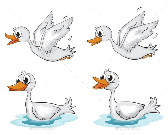 GraphicRiver Four Ducks 9493801
