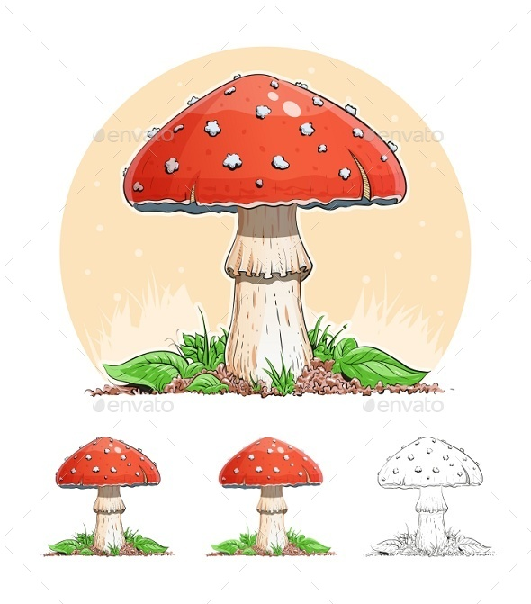 GraphicRiver Amanita Mushroom 9497363