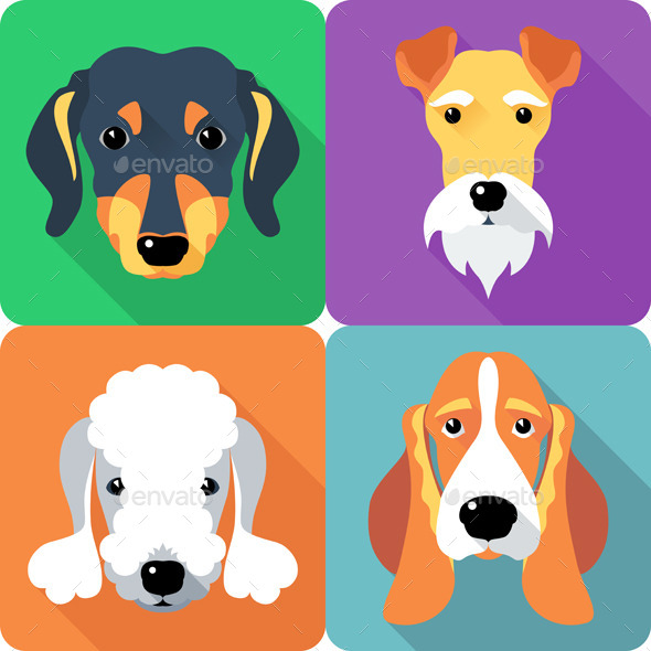 GraphicRiver Dog Set 9499644