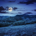 trees near valley in mountains  on hillside at night - PhotoDune Item for Sale