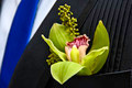 Flower Boutonniere - PhotoDune Item for Sale