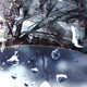 Snow Drops On Winter Window - 01 - VideoHive Item for Sale