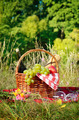 Picnic basket - PhotoDune Item for Sale
