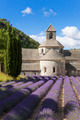 Abbey of Senanque and lavender field - PhotoDune Item for Sale