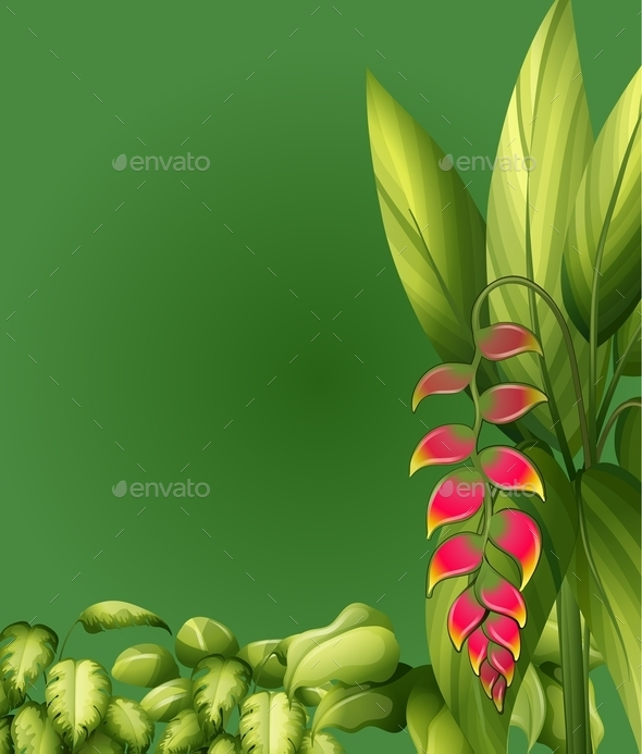 GraphicRiver Plants with Elliptic Leaves 9515762