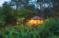 Tropical Home in the Jungle at Sunset - PhotoDune Item for Sale