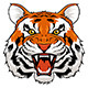 Angry Tiger - GraphicRiver Item for Sale