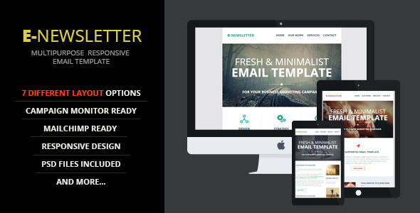 ThemeForest E-Newsletter Multipurpose Email Template 9522499