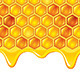 Honeycombs with Honey - GraphicRiver Item for Sale