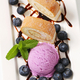 Sponge cake roll with ice cream and blueberries - PhotoDune Item for Sale