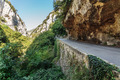 Road in gorge in the Alpes-Maritimes, France - PhotoDune Item for Sale