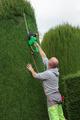 gardener mows bushes - PhotoDune Item for Sale