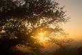 Sunrise Hamilton NZ - PhotoDune Item for Sale