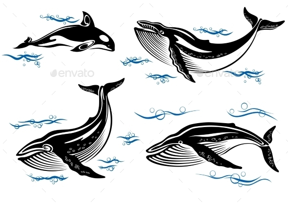 GraphicRiver Cartoon Sea Whales 9530358
