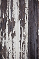 Old peeled off wooden planks surface background - PhotoDune Item for Sale