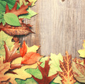 Autumn leaves over wooden background - PhotoDune Item for Sale