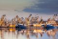 Dutch fishing fleet during majestic sunset - PhotoDune Item for Sale