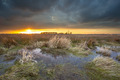 Threatening dark sky over swamp area during sunset - PhotoDune Item for Sale