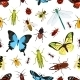 Insects Seamless Pattern - GraphicRiver Item for Sale