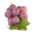 Bunch of red grapes - PhotoDune Item for Sale