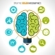 Creative Brain Infographics - GraphicRiver Item for Sale