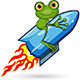 Frog on a Rocket - GraphicRiver Item for Sale