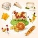 Natural Cheese Concept - GraphicRiver Item for Sale