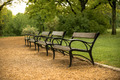 Stylish bench in autumn park - PhotoDune Item for Sale