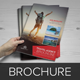 Travel Agency Brochure Catalog InDesign Template 2 - GraphicRiver Item for Sale