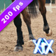 Horse Kicking Sand - VideoHive Item for Sale