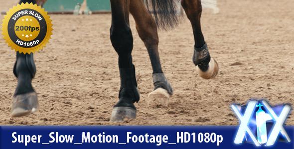Horse Kicking Sand