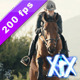 Horse Rider - VideoHive Item for Sale