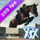 Equestrian Jumper - VideoHive Item for Sale