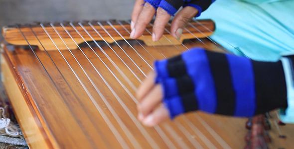 Harp Performer