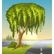 A Big Tree at the Road - GraphicRiver Item for Sale