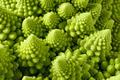 Romanesco broccoli - PhotoDune Item for Sale